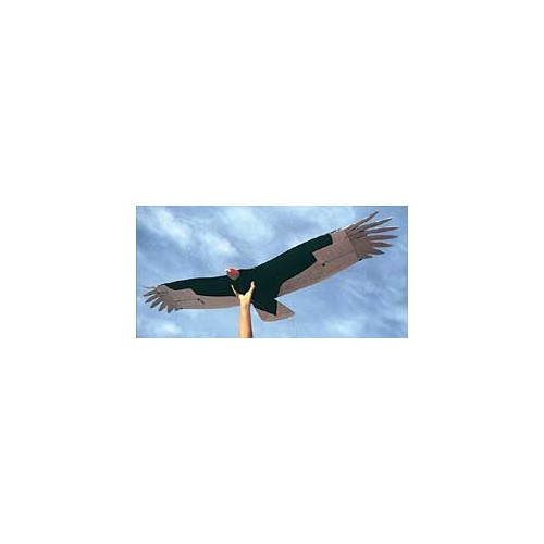 Turkey Vulture - Gliders - RC Planes - Plans - Air Age Store
