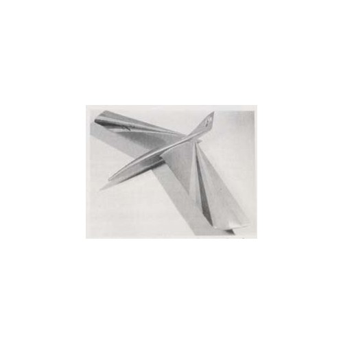 Toucan - Gliders - RC Planes - Plans - Air Age Store