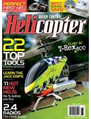RC Helicopter Winter 2008