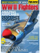 WWII Fighters Collectors Edition